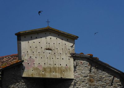 Portico, swifts nests