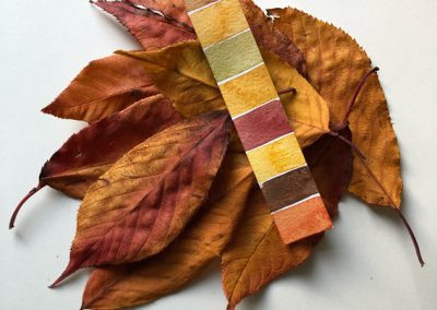 Play with paint and create colour strips